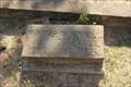Image for Mattie Murrell Driskill -- Sabinal Cemetery, Sabinal TX
