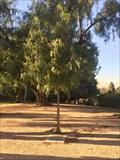 Image for Huy Pham - Costa Mesa, CA
