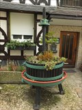 Image for Grape Press - Lahnstein - RLP / Germany