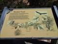 Image for Sandal Trail - Navajo National Monument, AZ