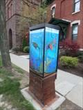 Image for Fish Tank - Elmira, NY