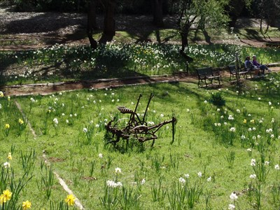 Lots of farm equipment and benches along the pathways.