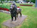Image for Kingston, Canada Lion Guarding the Grass