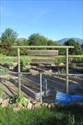Image for Community Garden - Salmon Arm, British Columbia