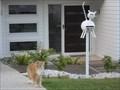 Image for Cat Letterbox, Orr St, Port Macquarie, NSW, Australia