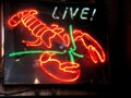 Image for Live Lobster at El Galleon  -  Avalon, CA