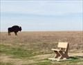 Image for Buffalo Hunt Silhouettes – Eagleville, MO