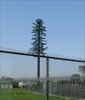 Image for Fake Pine Tree Tower - Garden Grove, CA