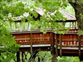 Image for David Wenzel Treehouse - Nay Aug Park, Scranton, PA