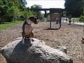 Image for Piedmont Dog Park