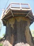 Image for Toronto Zoo Treehouse  -  Toronto, Ontario