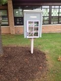 Image for Lewis Street Little Free Library # 29028 - Rockford, Michigan