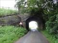 Image for Parsley Hay Bridge On The High Peak Trail - Parsley Hay, UK