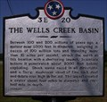 Image for The Wells Creek Basin