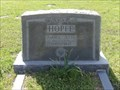 Image for Amalie Julia Hopfe - Roberts Cemetery, Hockley, TX