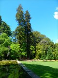 Image for Sequoia Wellington - Quinta das Lágrimas - Coimbra, Portugal