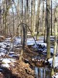 Image for ORIGIN- Otter Creek