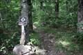 Image for AT at Benton-MacKaye Trail -- Springer Mountain GA