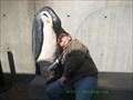 Image for Penguins Bench, New England Aquarium - Boston, MA