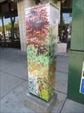 Image for In Celebration of Berkeley Gardens - Berkeley, CA