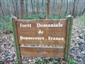 Image for Forêt domaniale de Bonsecours - Condé-sur-l'Escaut, France