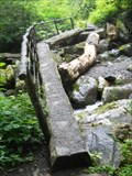 Image for Ramsey Cascades Trail - third bridge - GSMNP, TN
