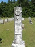Image for J.P. Cannon - Mountville Presbyterian Cemetery, Mountville (Laurens County), SC