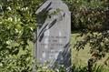 Image for Williamsport Settlement Cemetery - Alliance, Ohio