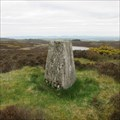 Image for O.S. Triangulation Pillar - Cochrage Muir, Perth & Kinross.