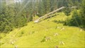 Image for Sommerrodelbahn Mieders, Tirol, Austria