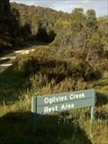 Image for Ogilvies Creek Rest Area, NSW, Australia
