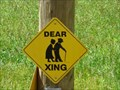 Image for Dear Crossing - Lansing, North Carolina