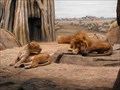 Image for Milwaukee County Zoo - Milwaukee, WI