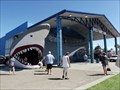 Image for Huge Shark False Entrance - Port Aransas, TX