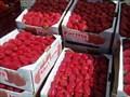Image for Saratoga Farmers Market - Saratoga, CA