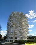 Image for PLUS BEAU(MOST BEAUTIFULL)-Arbre Blanc - Montpellier, France