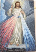 Image for The Divine Mercy of Jesus - Kailua-Kona, Hawaii Island, HI