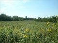 Image for Belmont Prairie - Downers Grove, IL