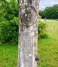Image for J.E. Perkins - Illinois Bend Memorial Cemetery - Illinois Bend, TX