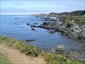 Image for The Water Horse - Fort Bragg CA