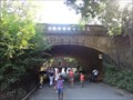 Image for Central Park Zoo Bridge  -  New York City, NY
