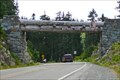 Image for Chinook Pass Entrance Arch - Mt. Rainier National Park, WA