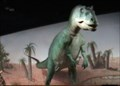 Image for Allosaurus -  Las Vegas, Nevada