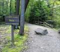 Image for Adam Falls Trail - Linn Run State Park - Rector, Pennsylvania