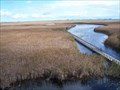 Image for Point Pelee National Park - Ontario, Canada