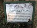 Image for Driscoll Pond - Haddonfield, NJ