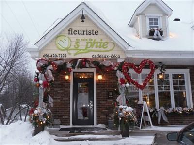 La Boutique et Des Cœurs et des Fleurs Extérieur.  Shop and The Hearts and Flowers Outside.