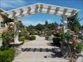 Image for South Natomas Rose trellis - Sacramento CA