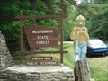 Image for Smokey of the Quehanna Wilds - Benezette, Pennsylvania