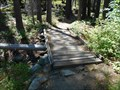 Image for Sand Pond foot bridge - Sierra County CA